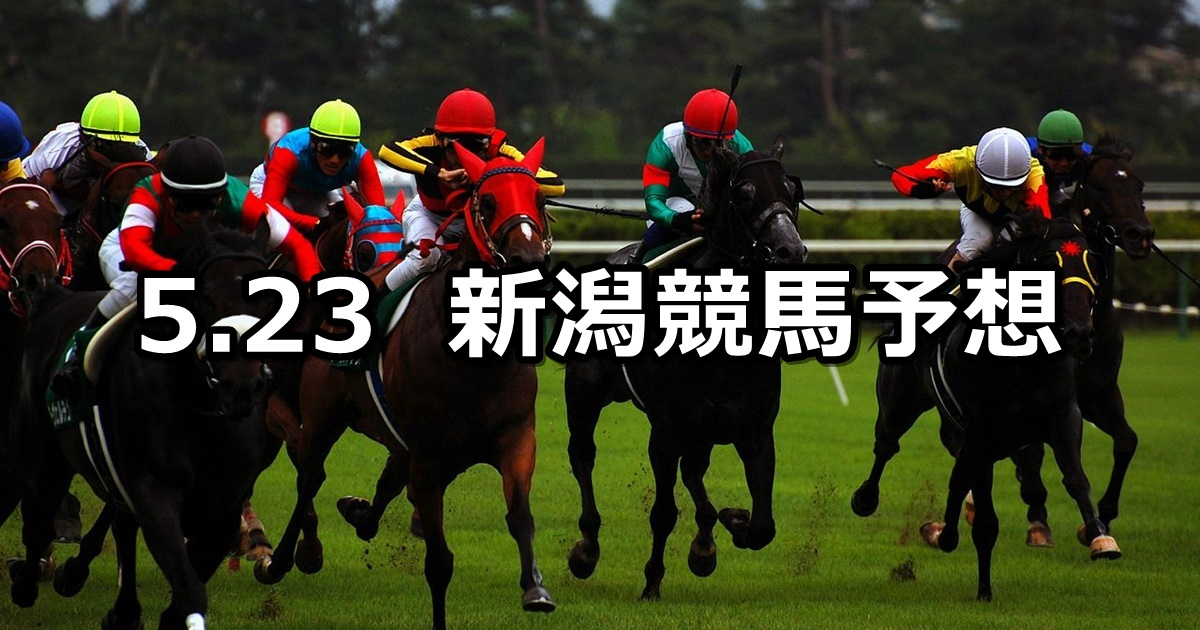 【韋駄天ステークス】2021/5/23(日) 中央競馬 穴馬予想(新潟競馬)