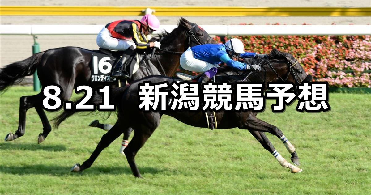 【日本海ステークス】2021/8/21(土) 中央競馬予想(新潟競馬)