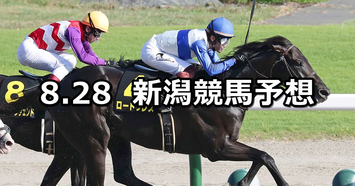 【BSN賞】2021/8/28(土) 中央競馬予想(新潟競馬)