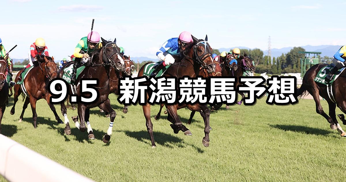 【新潟記念】2021/9/5(日) 中央競馬予想(新潟競馬)